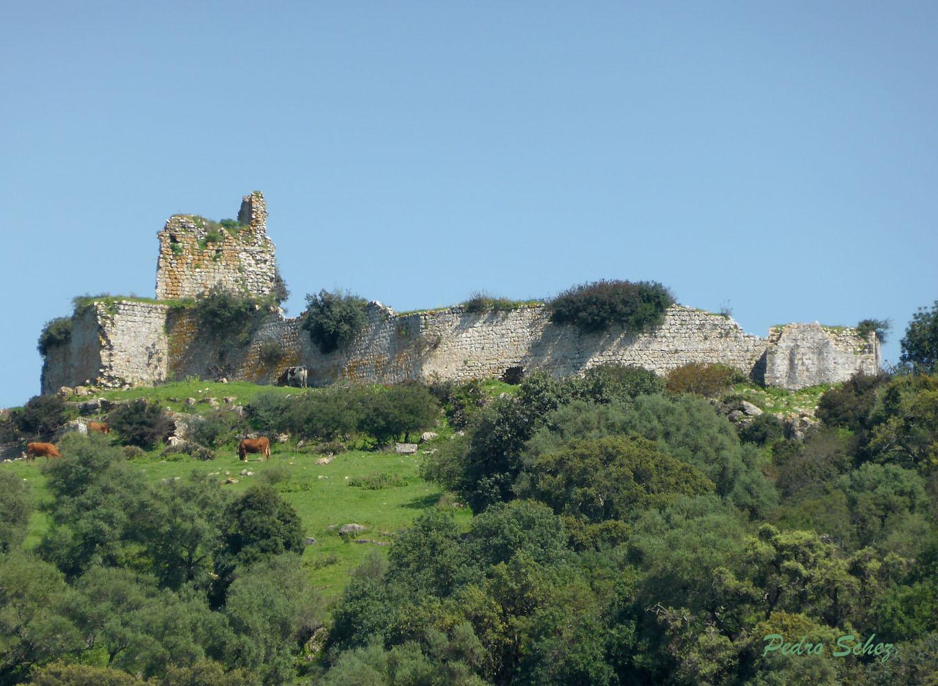 02-P1000095-Castillo de Matrera-Vista desde Rancho-Pedro Sanchez