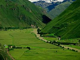 Peru Valle del Yucay detalle