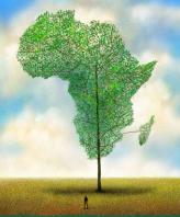 Africa verde 4